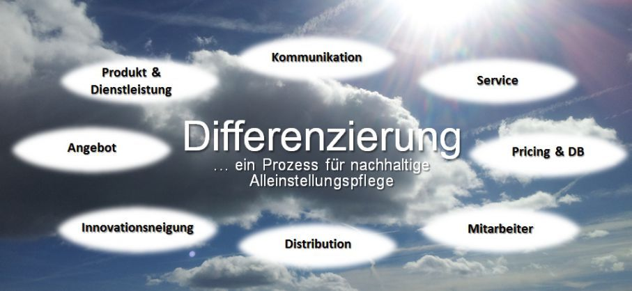 Differenzierung eine praktische Management-Strategie im Online-Marketing